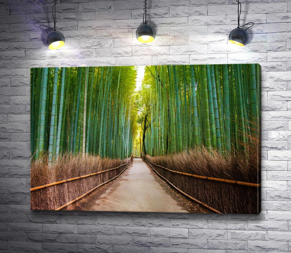 "Картина ""Проход между бамбука"""
