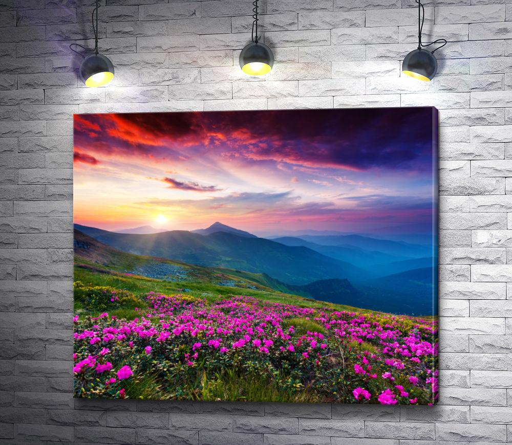 """Картина """"Цветочный горный луг и нереального цвета небо"""""""