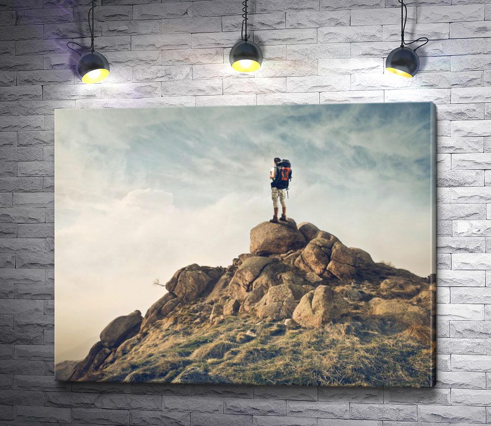 "Картина ""Турист на вершине горы"""