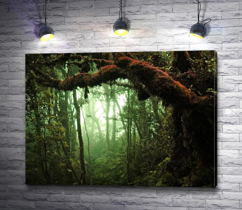 "Картина ""Густой лес"""
