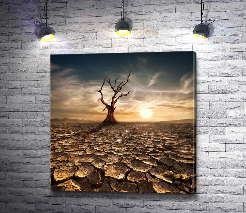 "Картина ""Беспощадная засуха"""