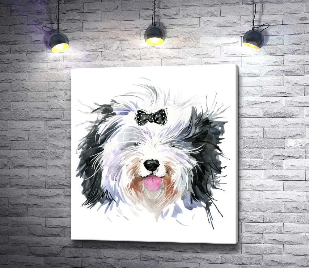 """Картина """"Лохматый пес с черным бантиком"""""""