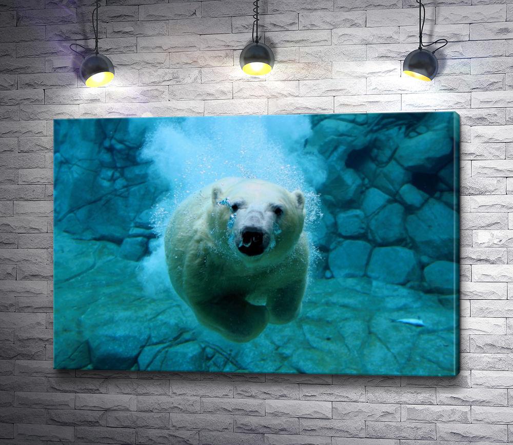 """Картина """"Белый медведь под водой"""""""