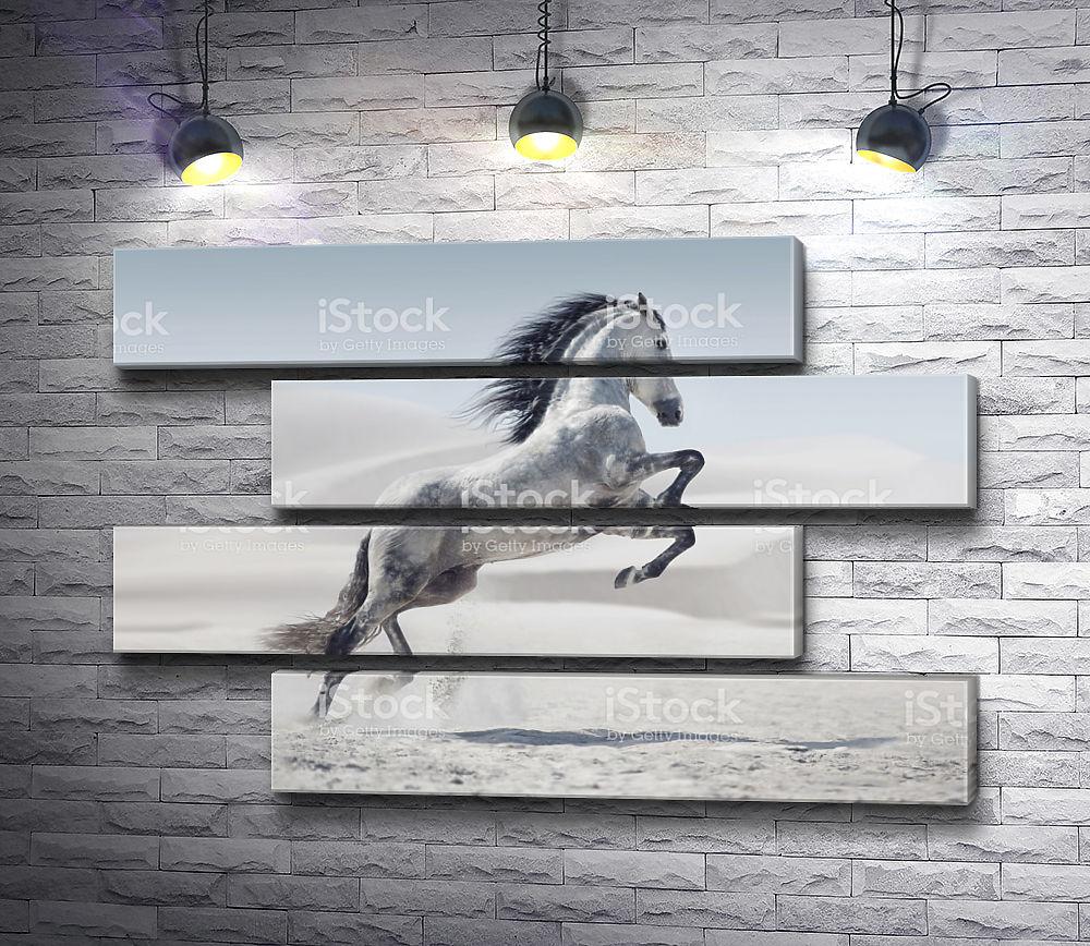 """Картина """"Одинокая лошадь в пустыне"""" из 4-х частей (модуль №23)"""