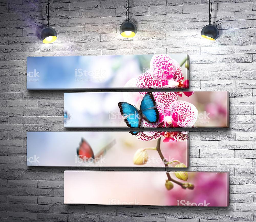 """Картина """"Леопардовая орхидея с бабочкой"""" из 4-х частей (модуль №23)"""