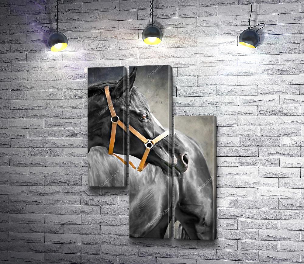 """Картина """"Лошадь в черно-белой гамме """" из 3-х частей (модуль №10)"""