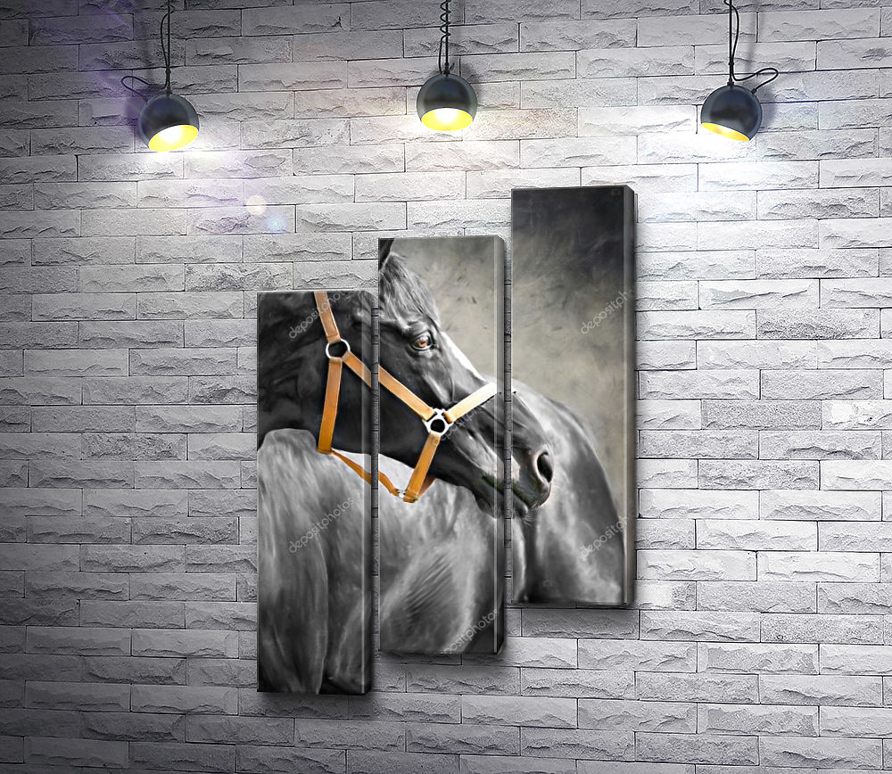 """Картина """"Лошадь в черно-белой гамме """" из 3-х частей (модуль №12)"""